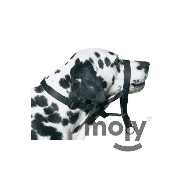 DOG CONTROL N.7 BOXER 54 CM