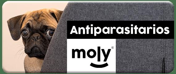 antiparasitarios moly