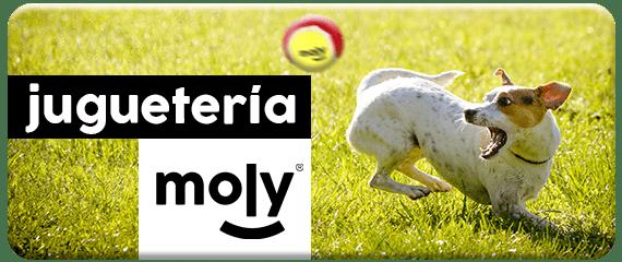 jugueteria de mascotas moly